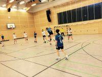 Handball-Landesmeister-2017-002