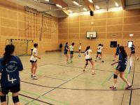 Handball-Landesmeister-2017-004