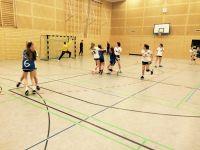 Handball-Landesmeister-2017-007