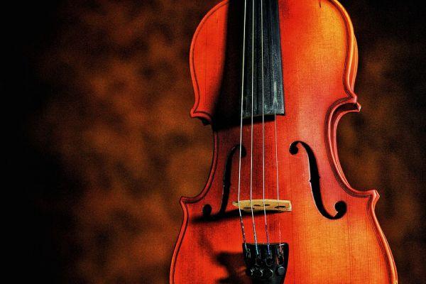 violin-4393622-960-720D0066DD9-2BE1-2D62-FB14-844D7E6002E5.jpg
